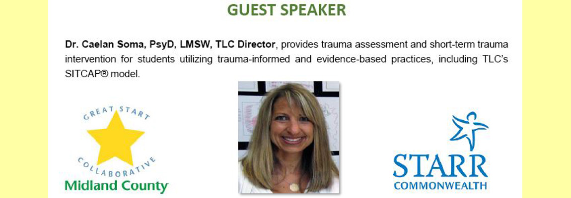 Childhood Trauma:  Awareness and Intervention Presentation